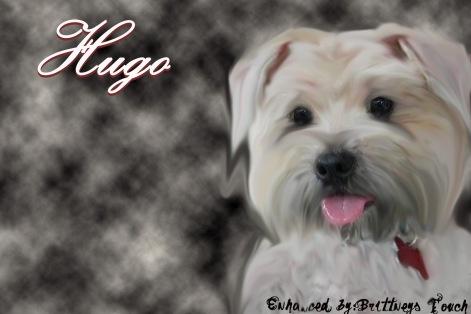 Hugo paint